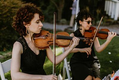 Viva la Vida Stumptown String Quartet